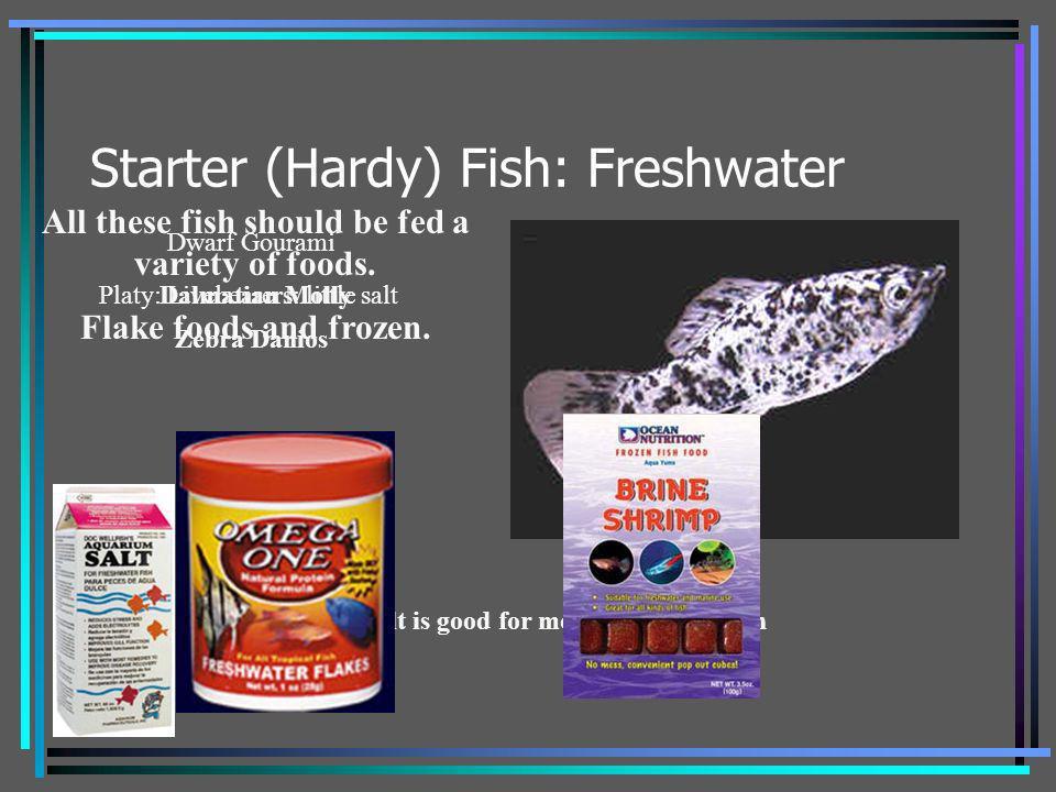 Starter (Hardy) Fish: Freshwater