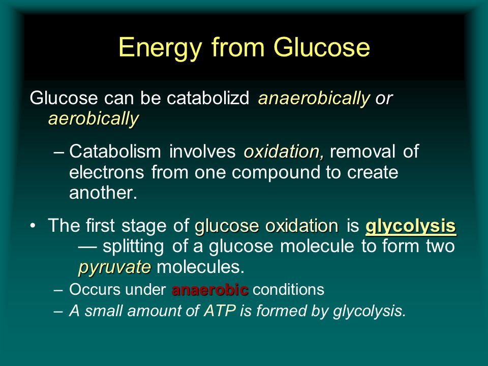 Energy from Glucose Glucose can be catabolizd anaerobically or aerobically.