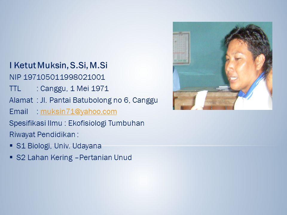 I Ketut Muksin, S.Si, M.Si NIP 197105011998021001