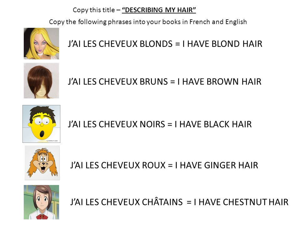 J'AI LES CHEVEUX BLONDS = I HAVE BLOND HAIR