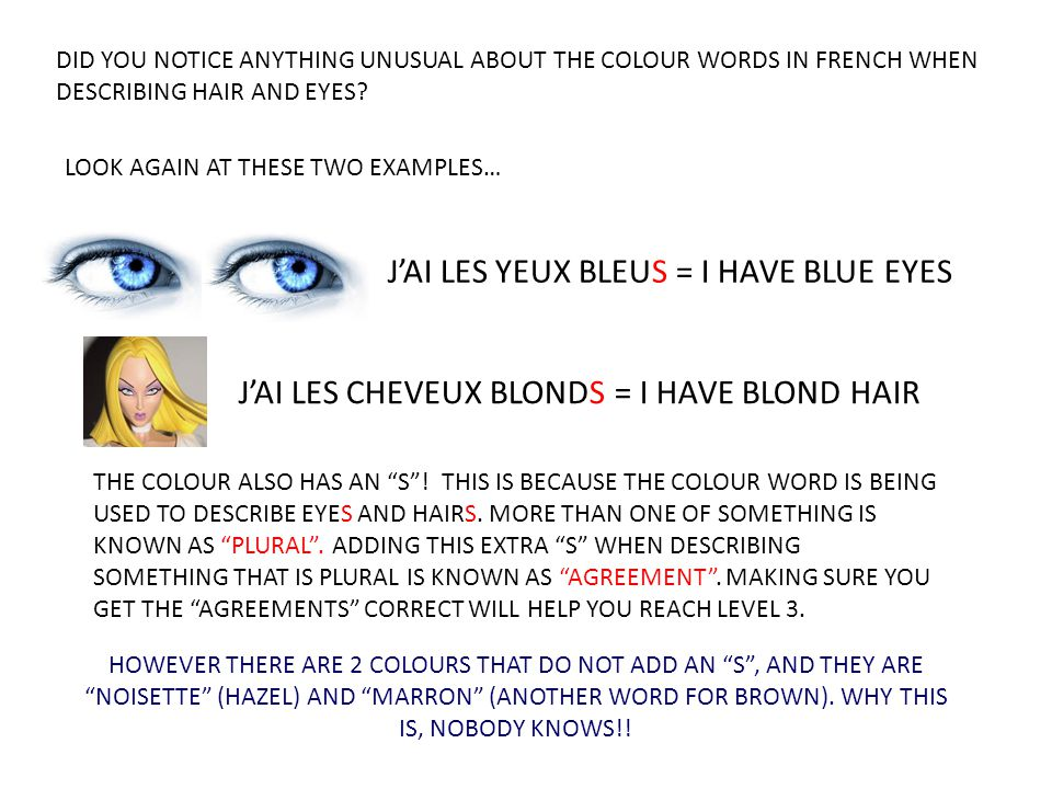 J'AI LES YEUX BLEUS = I HAVE BLUE EYES