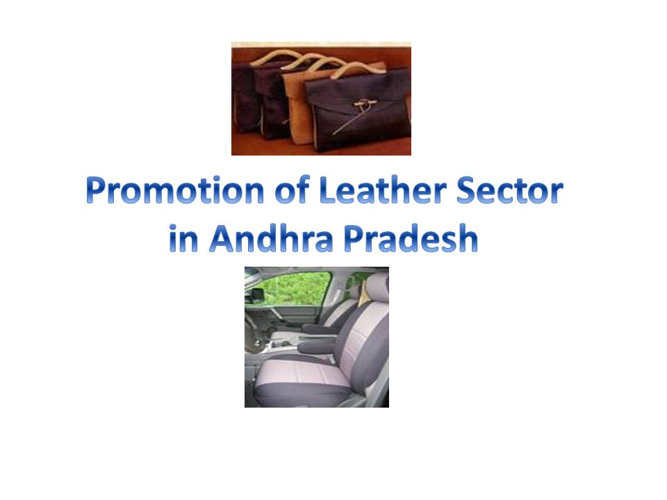 Promotion of Leather Sector