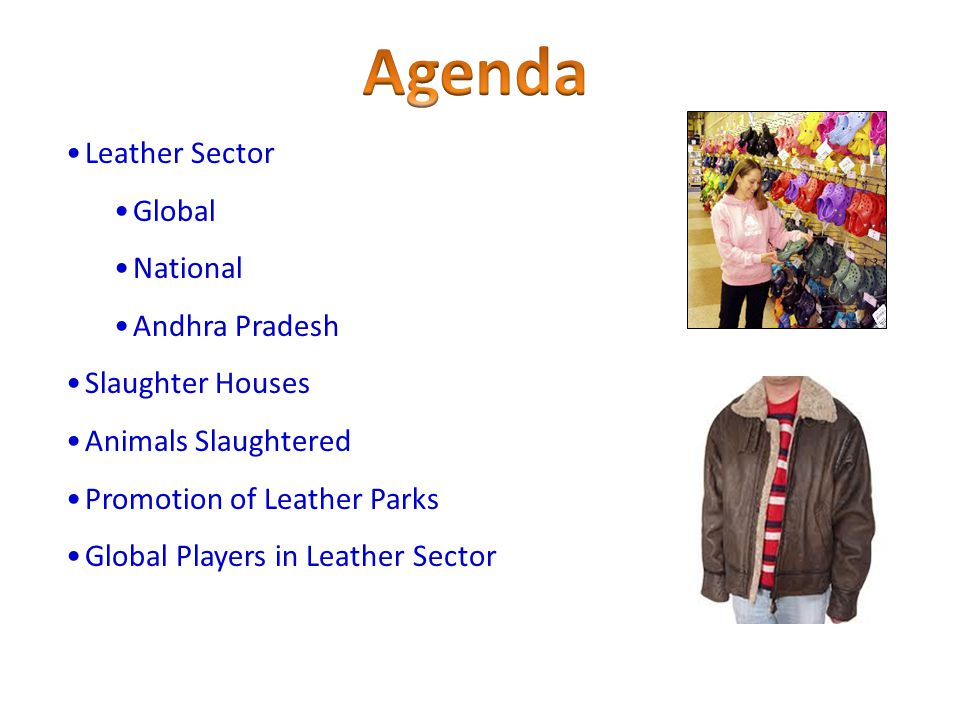 Agenda Leather Sector Global National Andhra Pradesh Slaughter Houses
