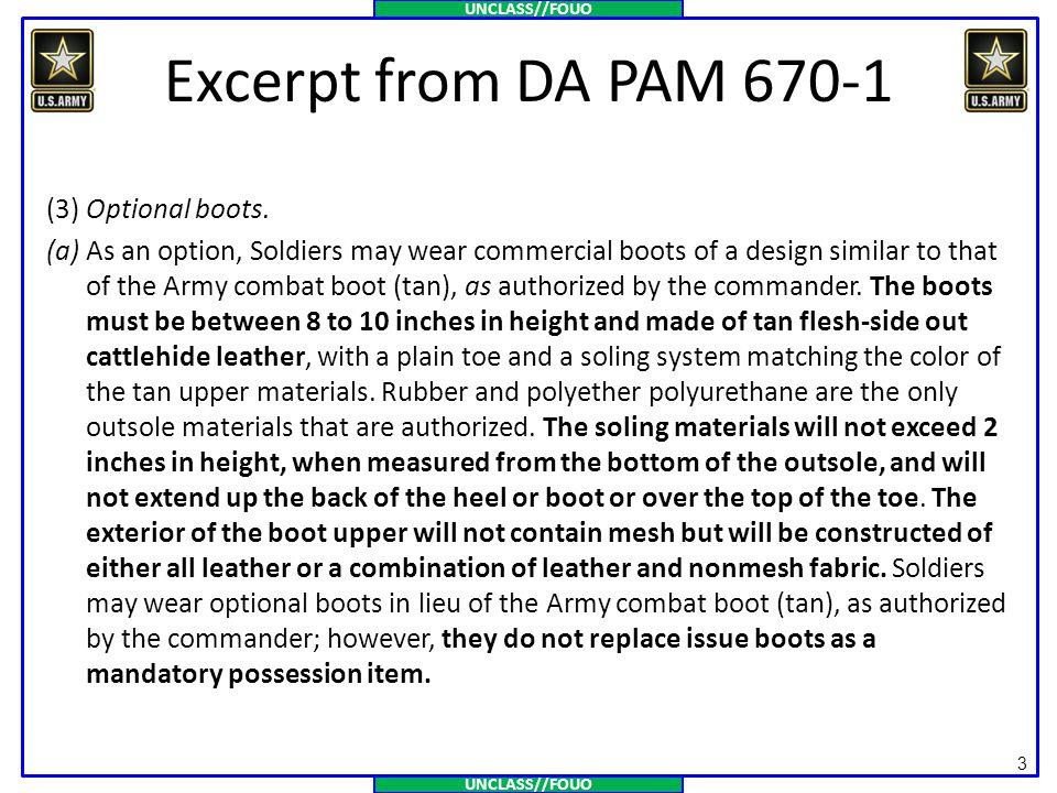 Excerpt from DA PAM 670-1