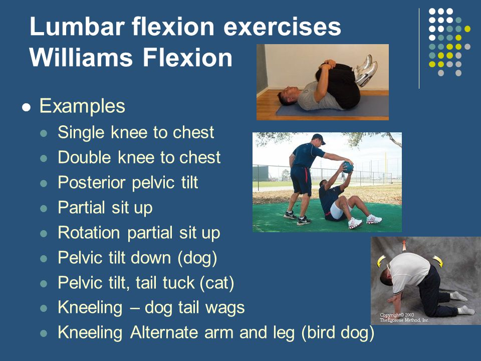 Lumbar flexion exercises Williams Flexion