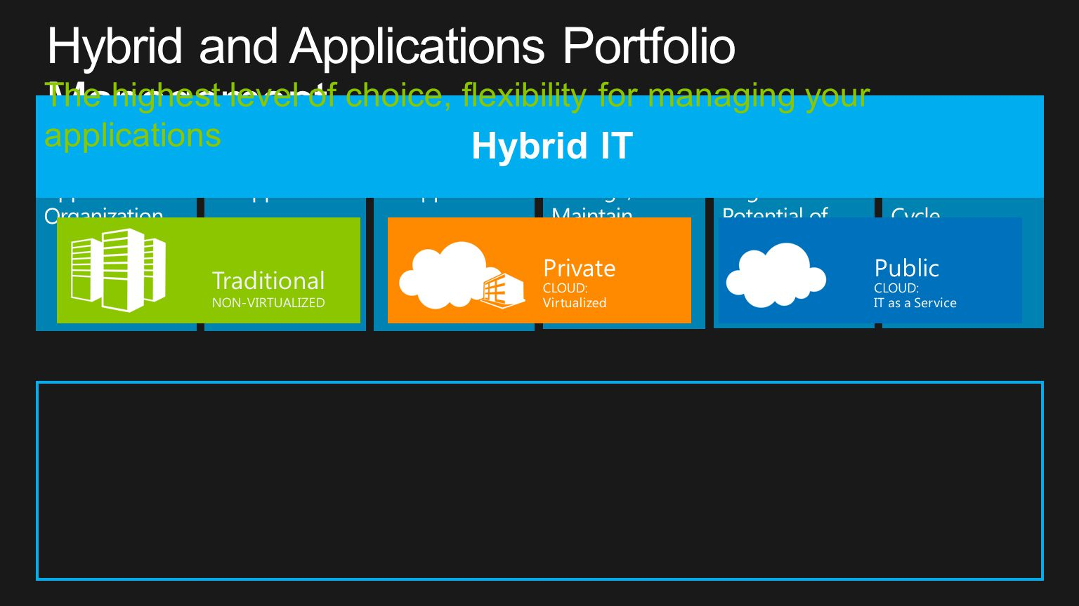 Hybrid and Applications Portfolio Management