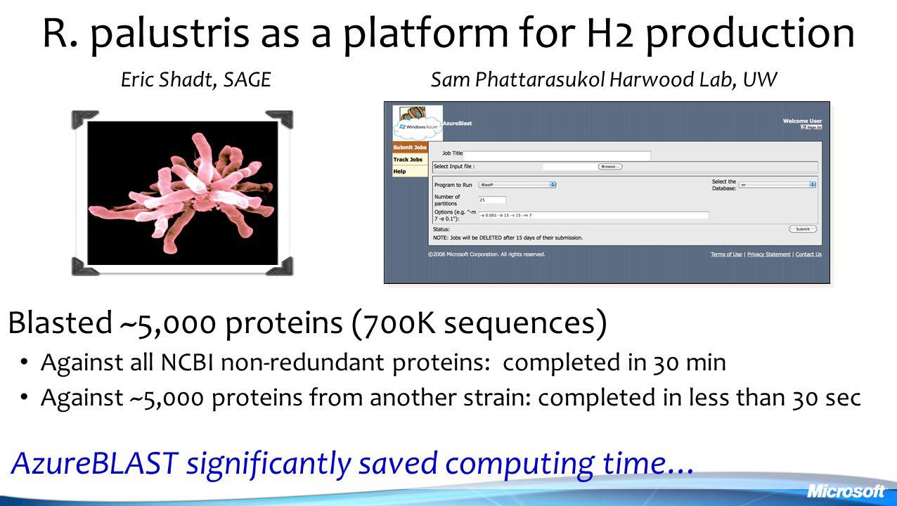 R. palustris as a platform for H2 production
