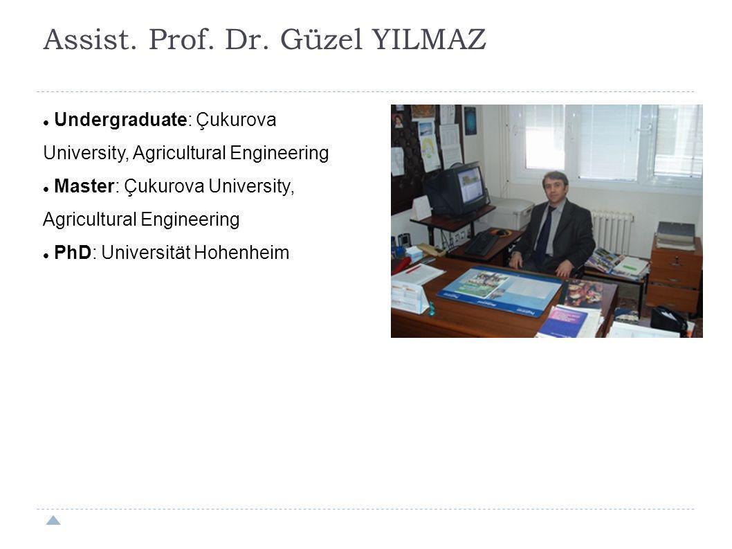 Assist. Prof. Dr. Güzel YILMAZ