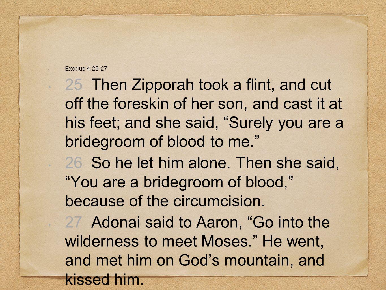 Exodus 4:25-27