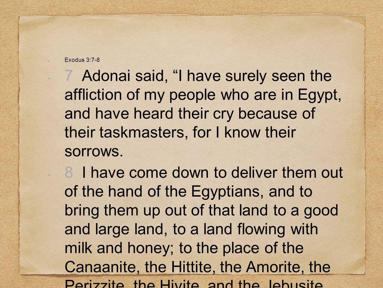 Exodus 3:7-8