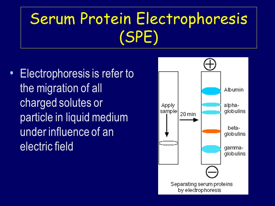 Serum Protein Electrophoresis (SPE)