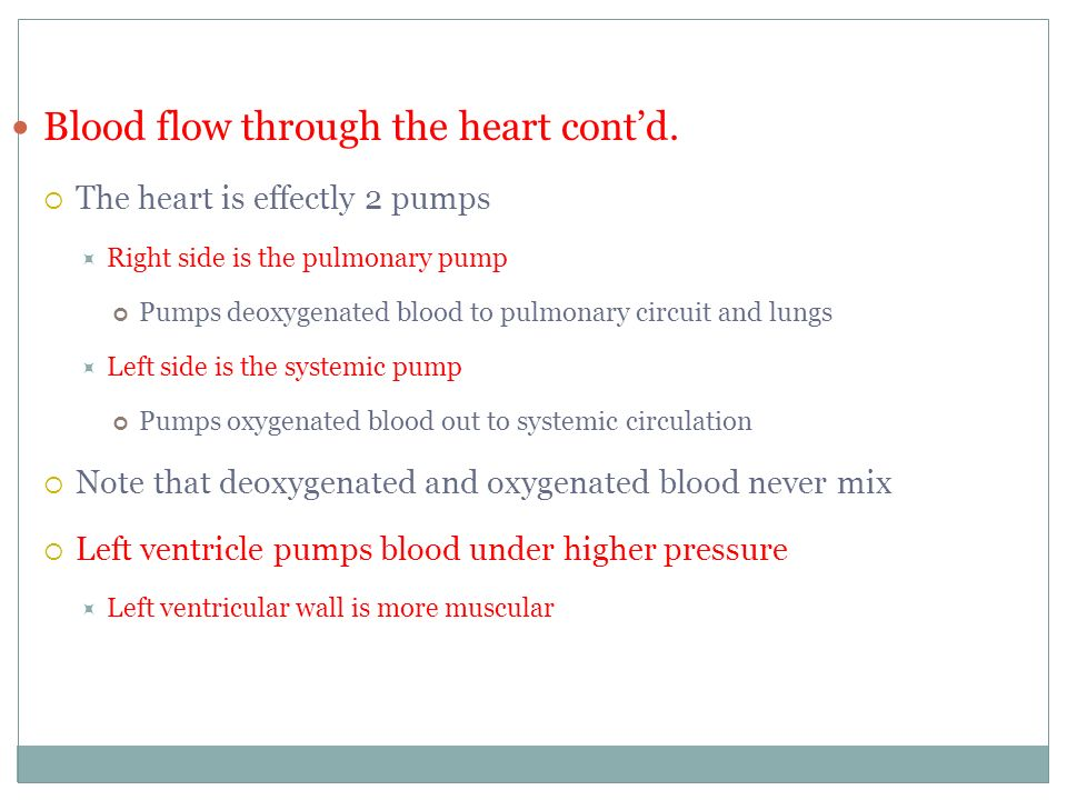 Blood flow through the heart cont'd.