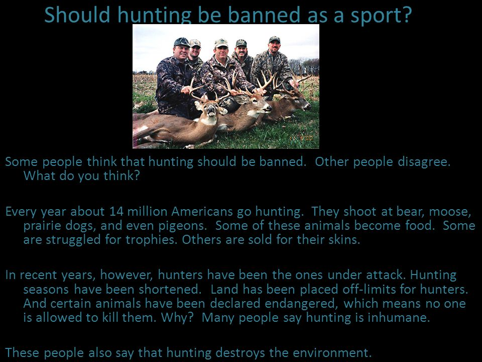 Should hunting be banned as a sport