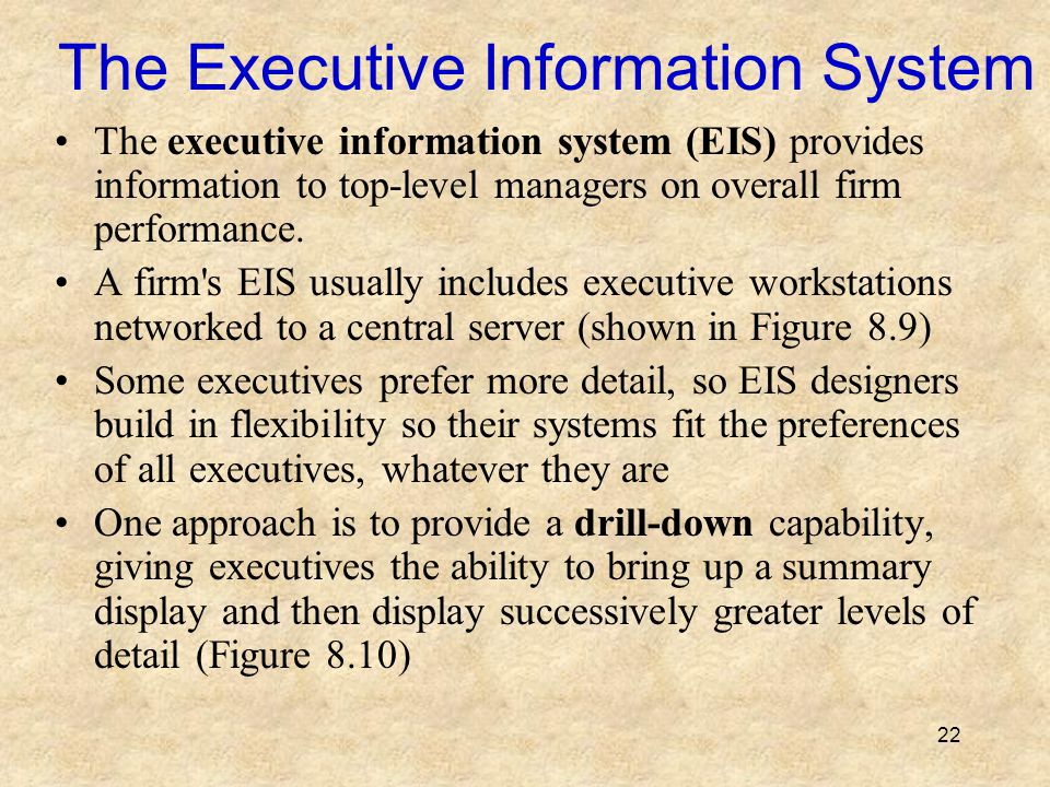 The Executive Information System