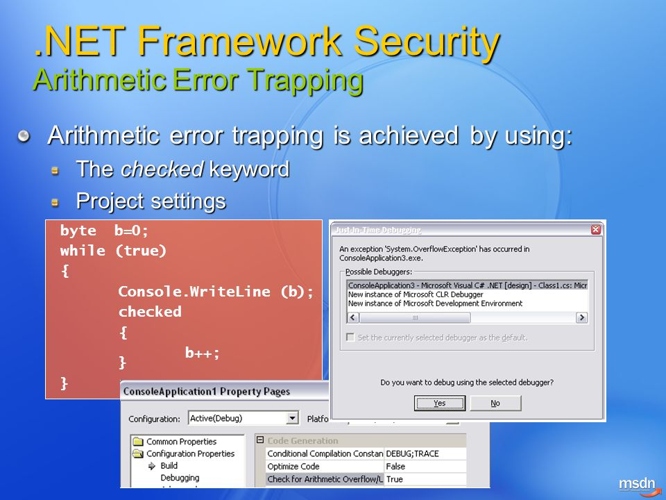 .NET Framework Security Arithmetic Error Trapping