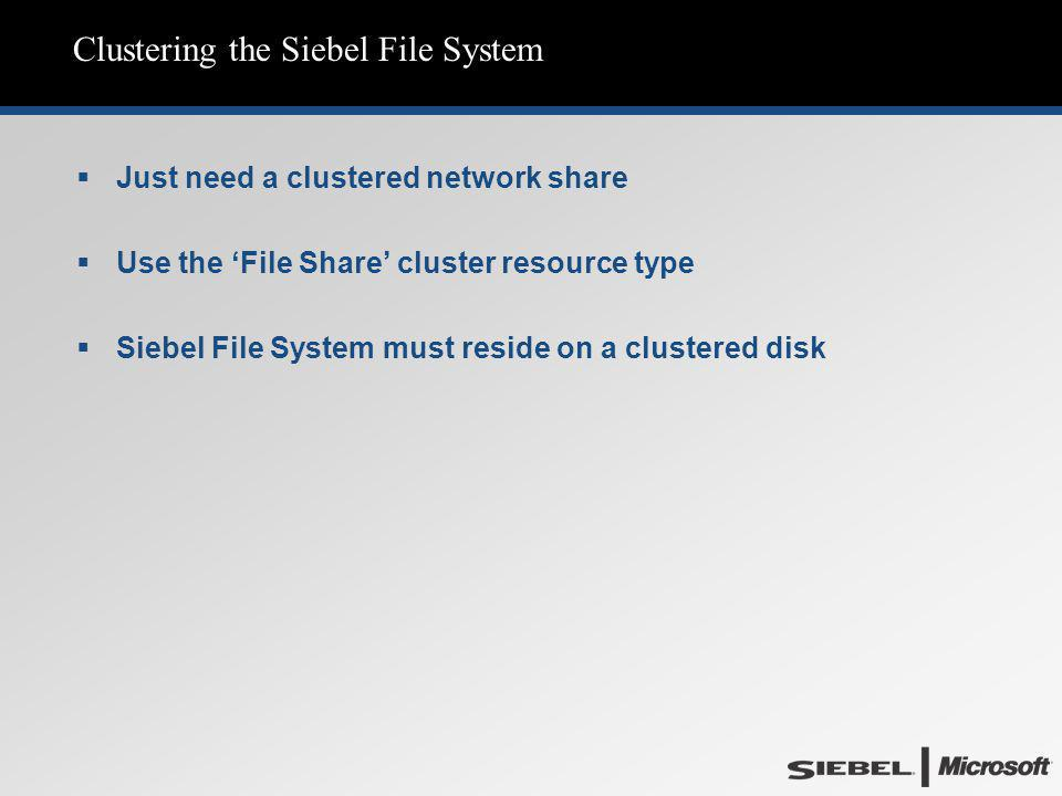 Clustering the Siebel File System