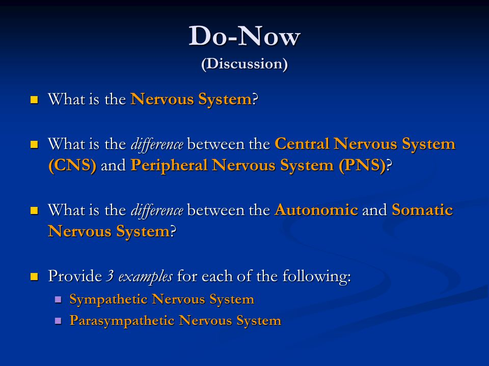 Do-Now (Discussion) What is the Nervous System
