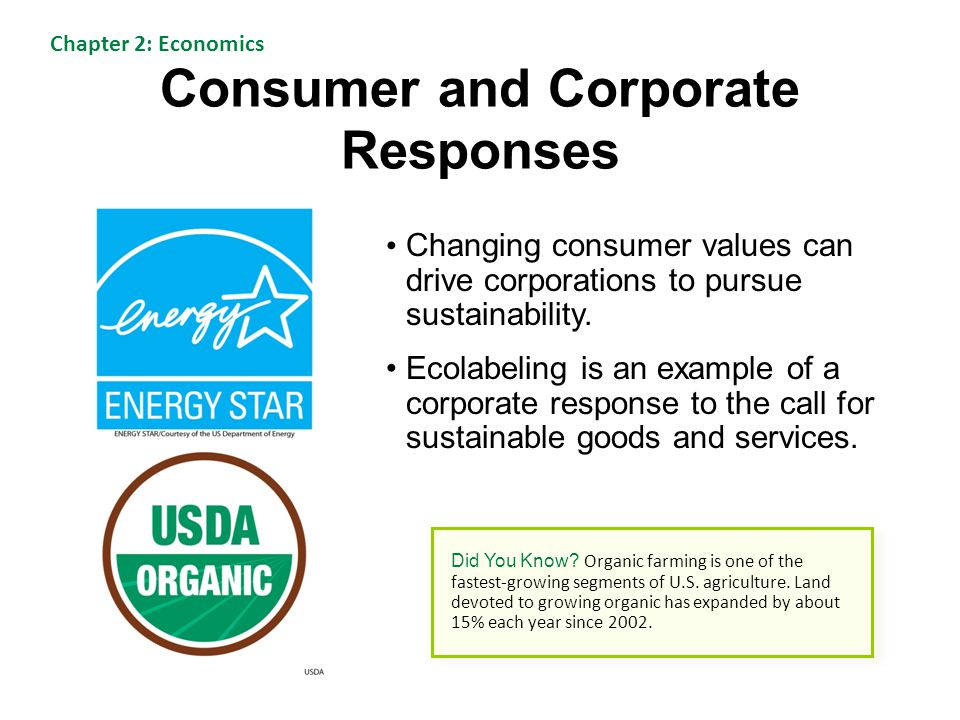 Consumer and Corporate Responses