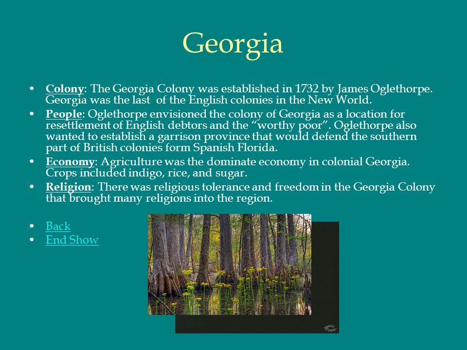Georgia Colony: The Georgia Colony was established in 1732 by James Oglethorpe. Georgia was the last of the English colonies in the New World.