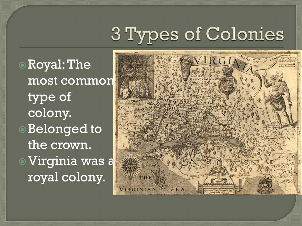 3 Types of Colonies Royal: The most common type of colony.