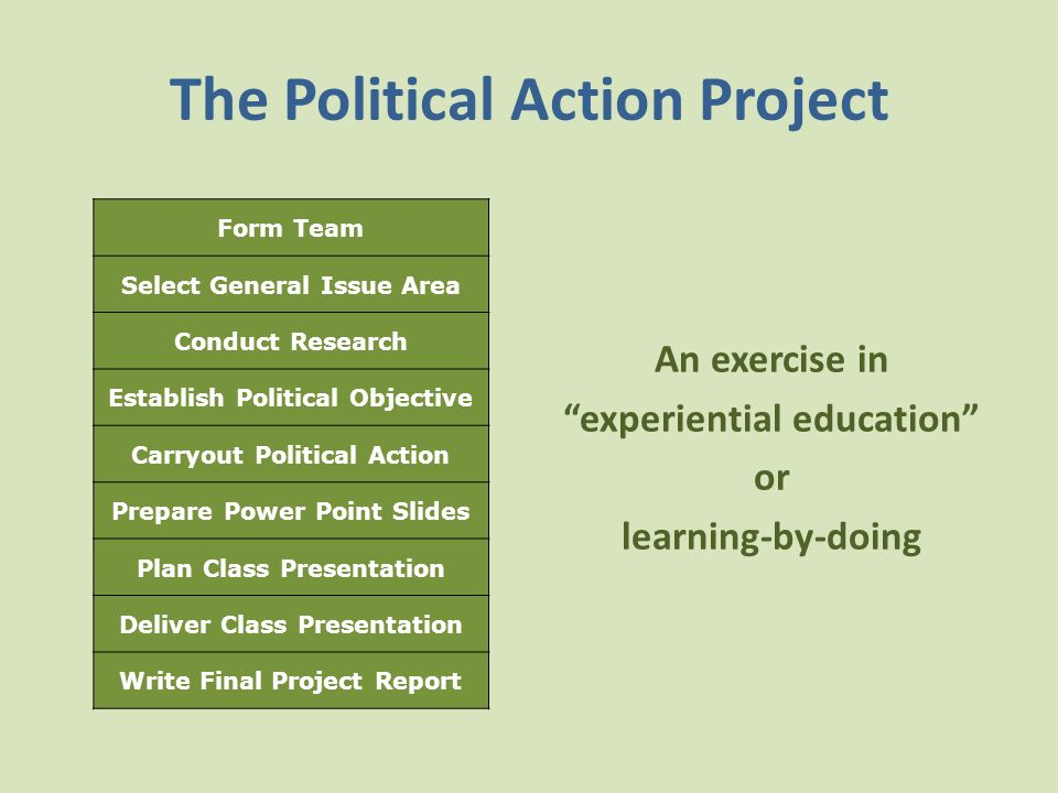 The Political Action Project