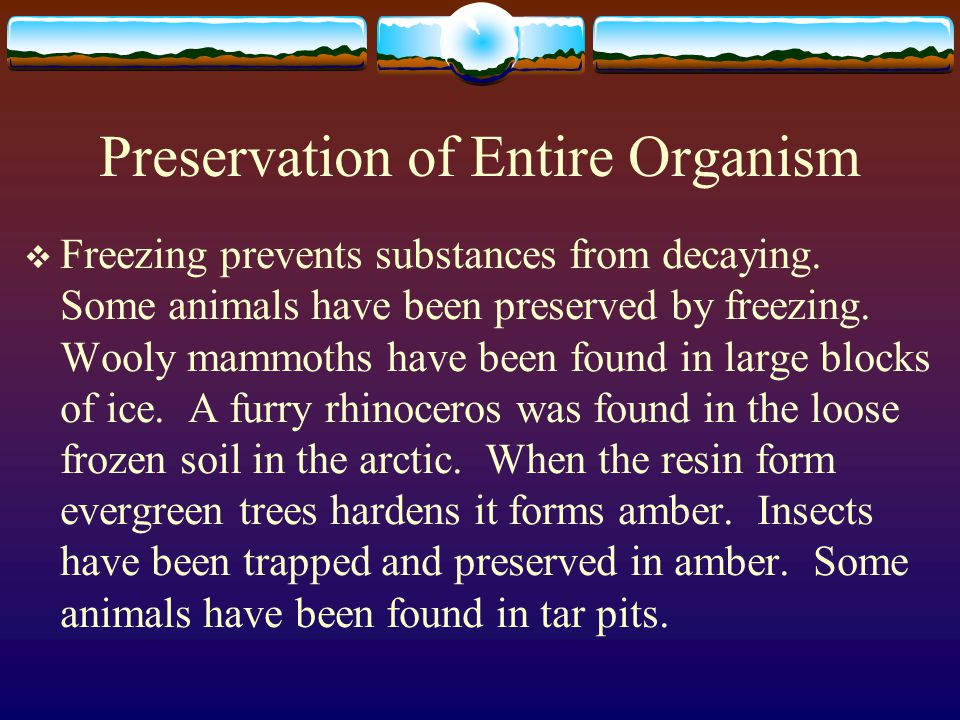 Preservation of Entire Organism
