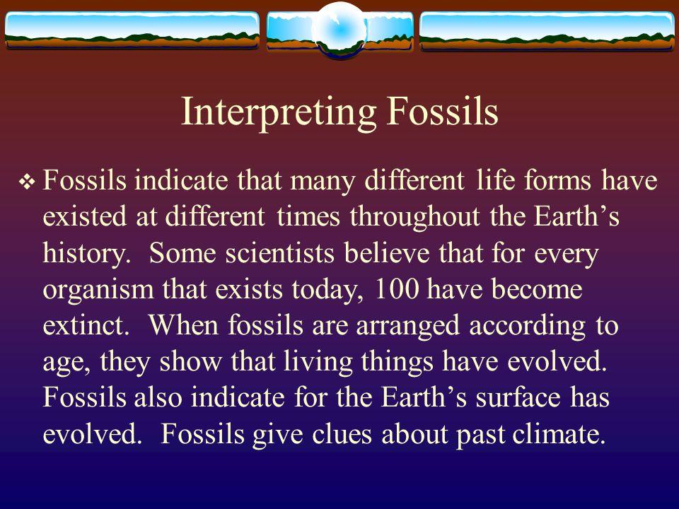 Interpreting Fossils