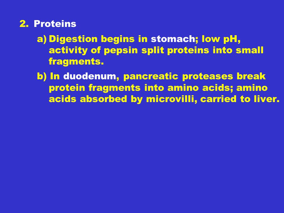 2. Proteins Digestion begins in stomach; low pH, activity of pepsin split proteins into small fragments.