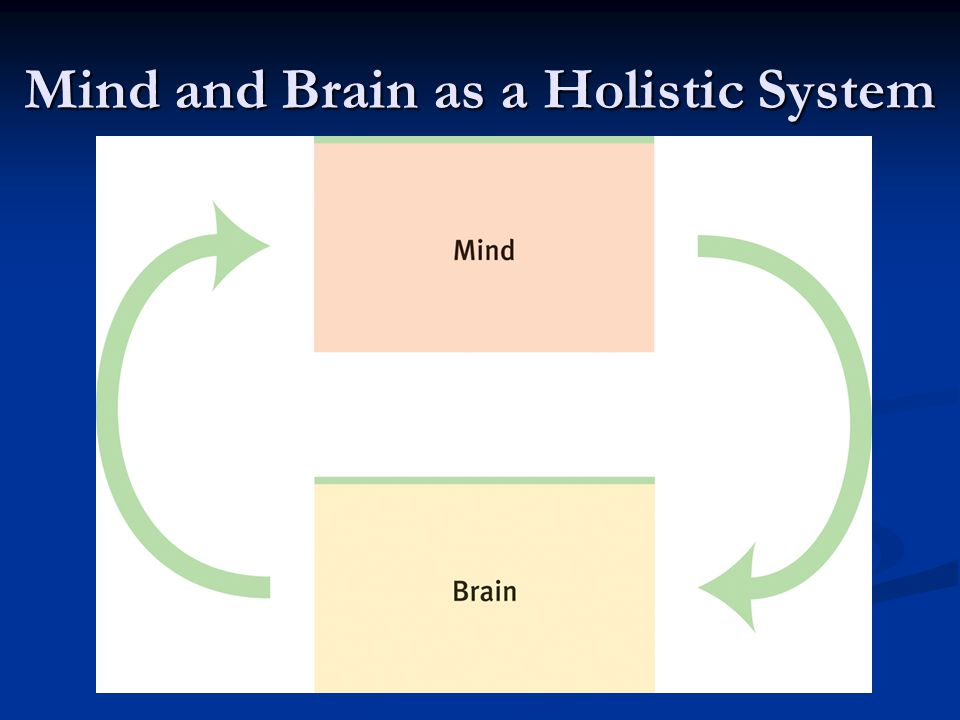 Mind and Brain as a Holistic System
