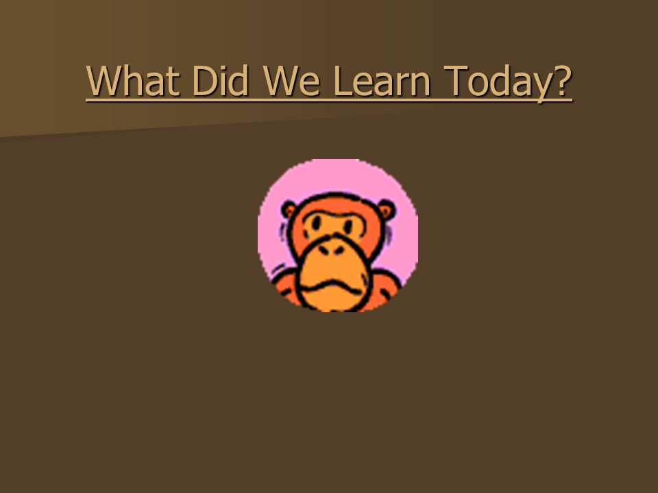 What Did We Learn Today