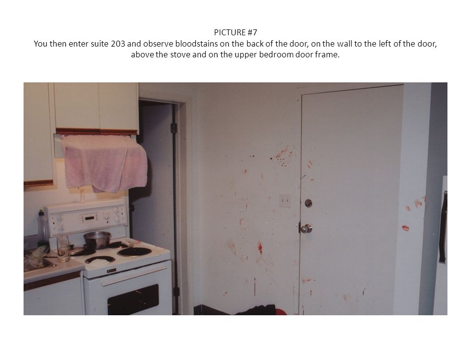 PICTURE #7 You then enter suite 203 and observe bloodstains on the back of the door, on the wall to the left of the door, above the stove and on the upper bedroom door frame.