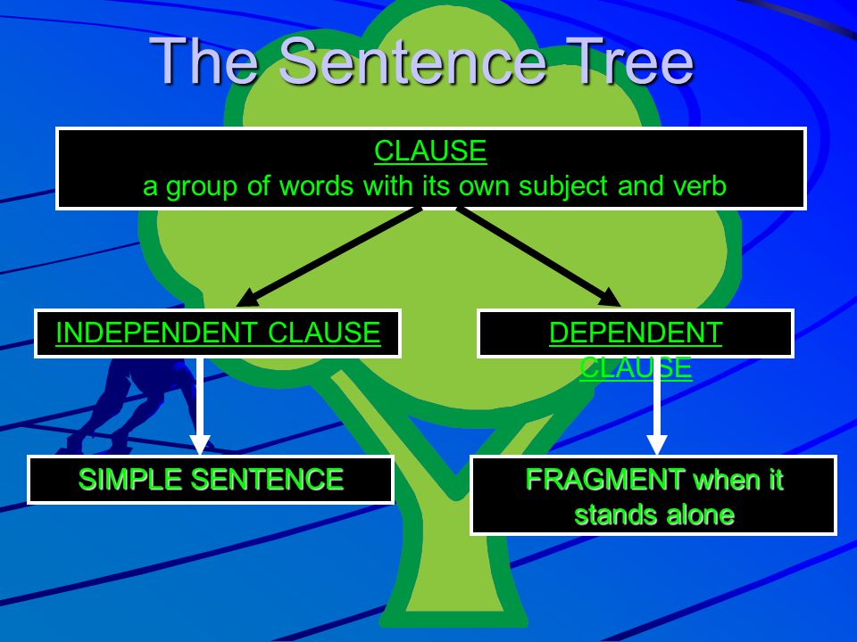 The Sentence Tree CLAUSE