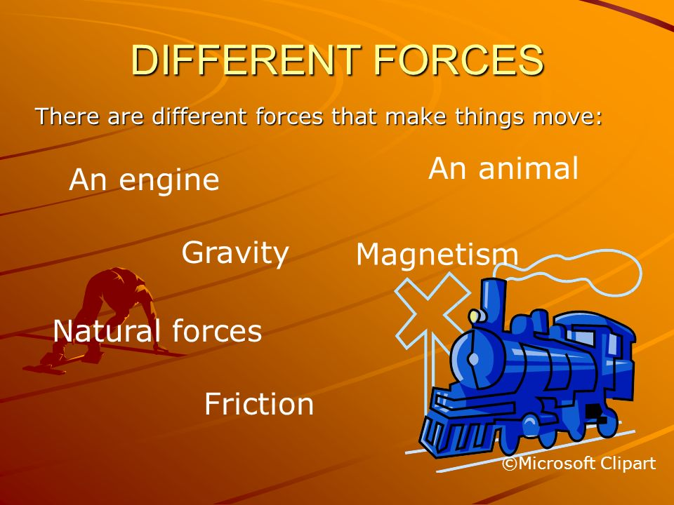 DIFFERENT FORCES An animal An engine Gravity Magnetism Natural forces