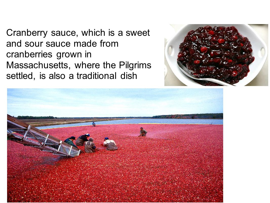 Cranberry sauce, which is a sweet and sour sauce made from cranberries grown in Massachusetts, where the Pilgrims settled, is also a traditional dish