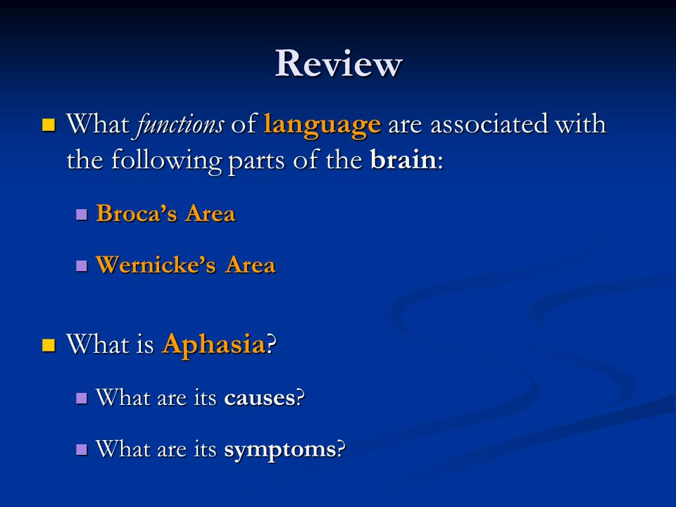 Review What functions of language are associated with the following parts of the brain: Broca's Area.