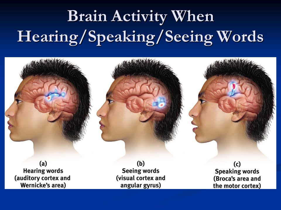 Brain Activity When Hearing/Speaking/Seeing Words