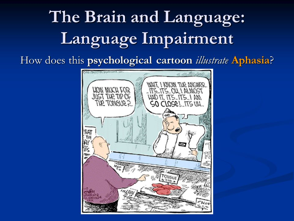 The Brain and Language: Language Impairment