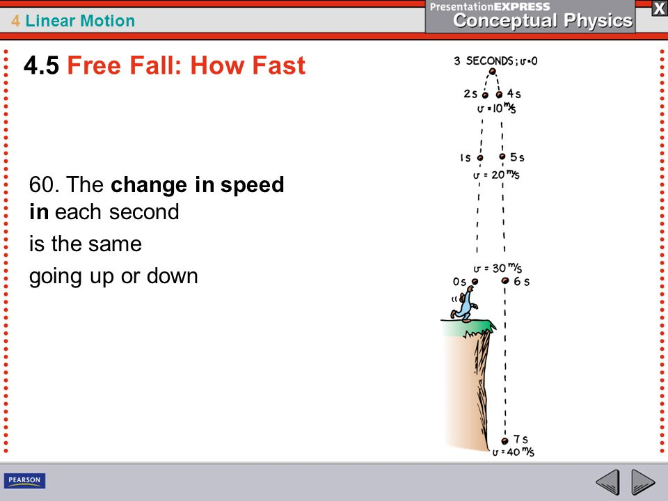 4.5 Free Fall: How Fast 60. The change in speed in each second
