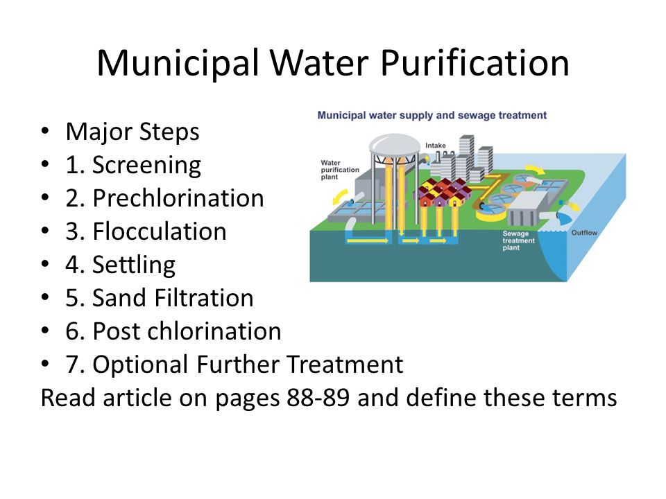 Municipal Water Purification