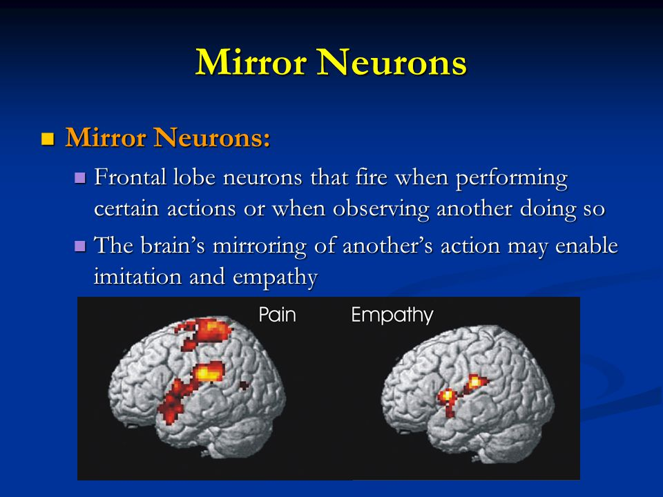 Mirror Neurons Mirror Neurons: