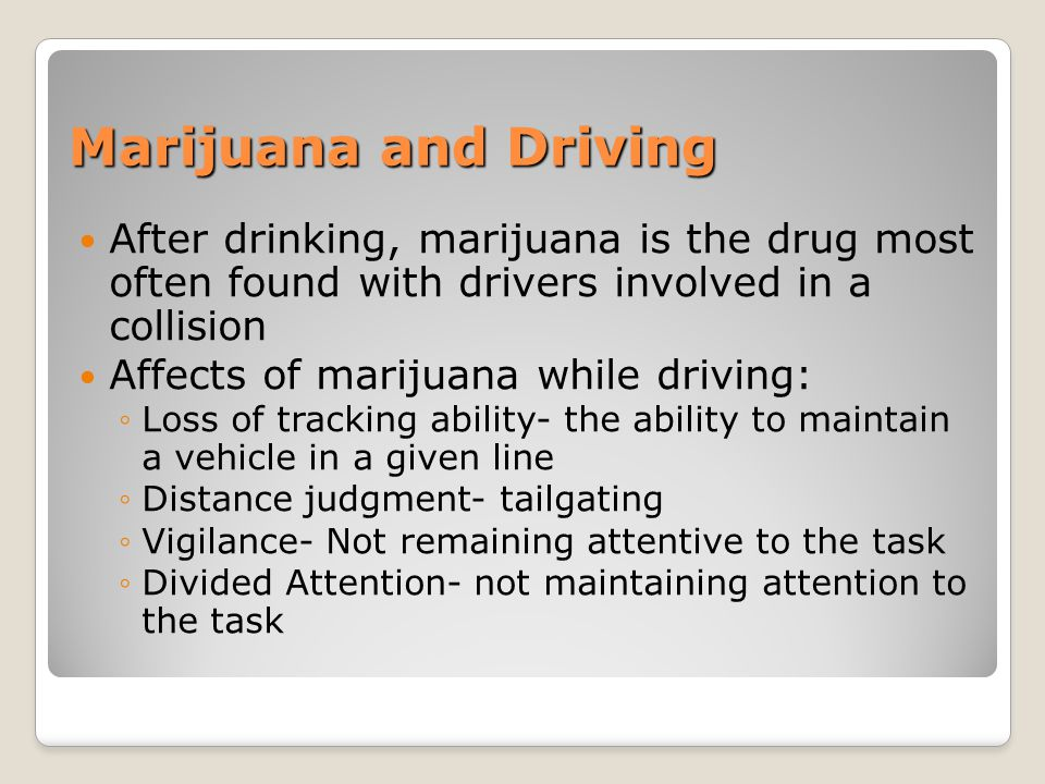 Marijuana and Driving After drinking, marijuana is the drug most often found with drivers involved in a collision.