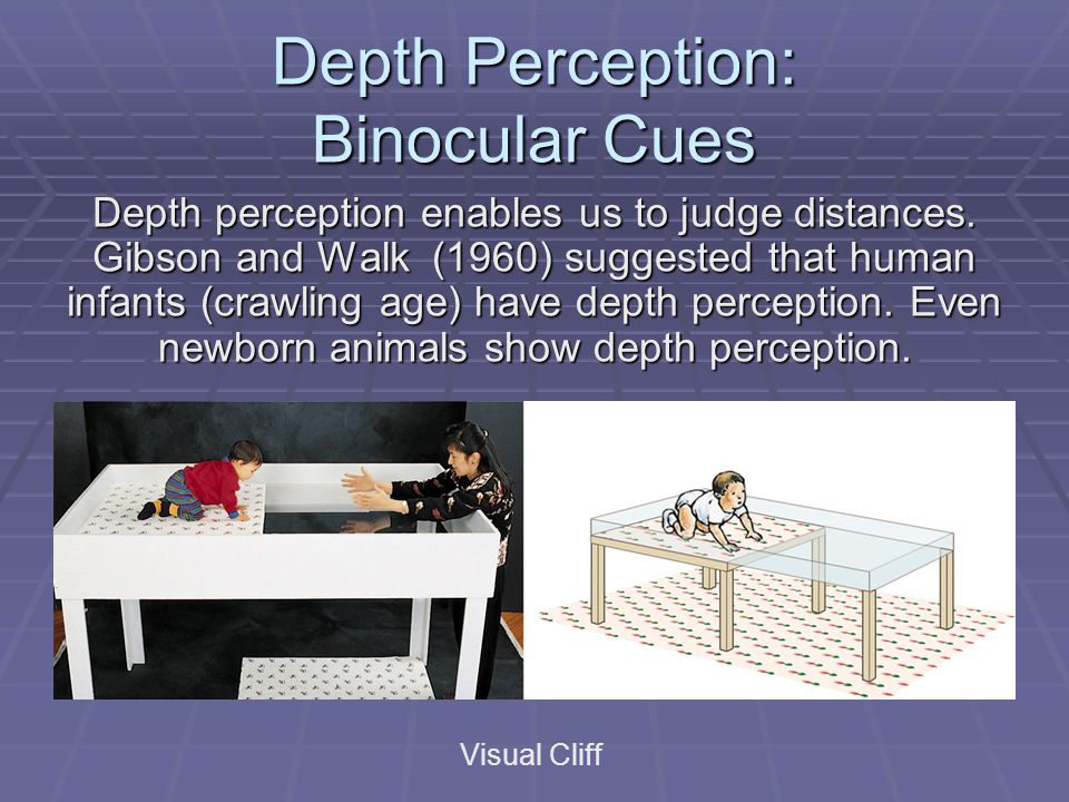 Depth Perception: Binocular Cues