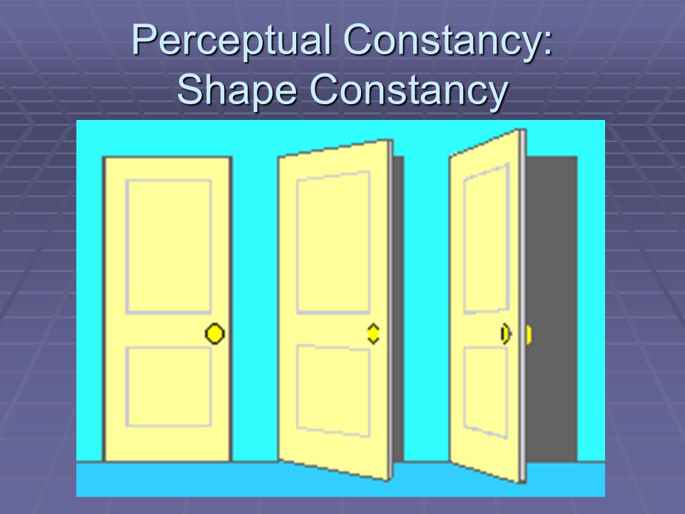 Perceptual Constancy: Shape Constancy