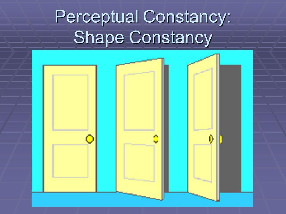 Perceptual Constancy: Shape Constancy