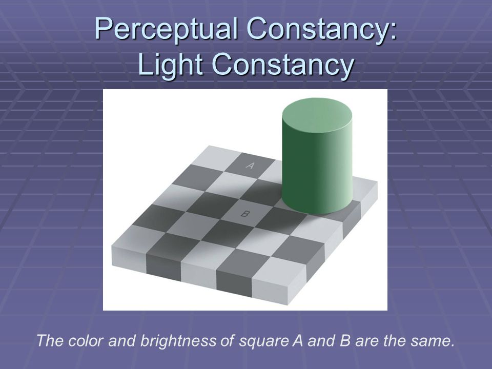 Perceptual Constancy: Light Constancy