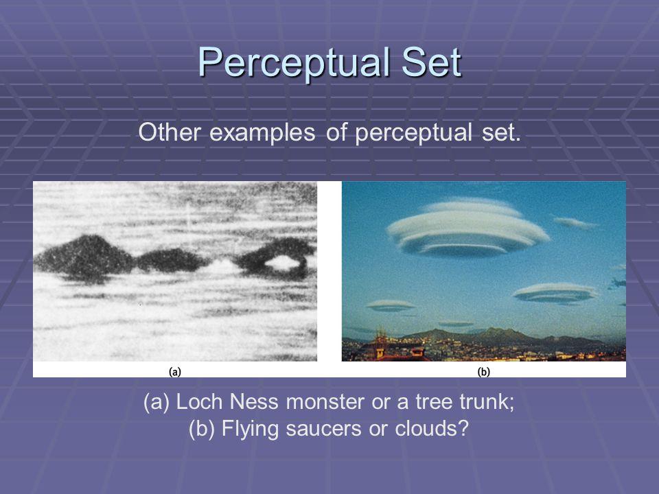 Perceptual Set Other examples of perceptual set.
