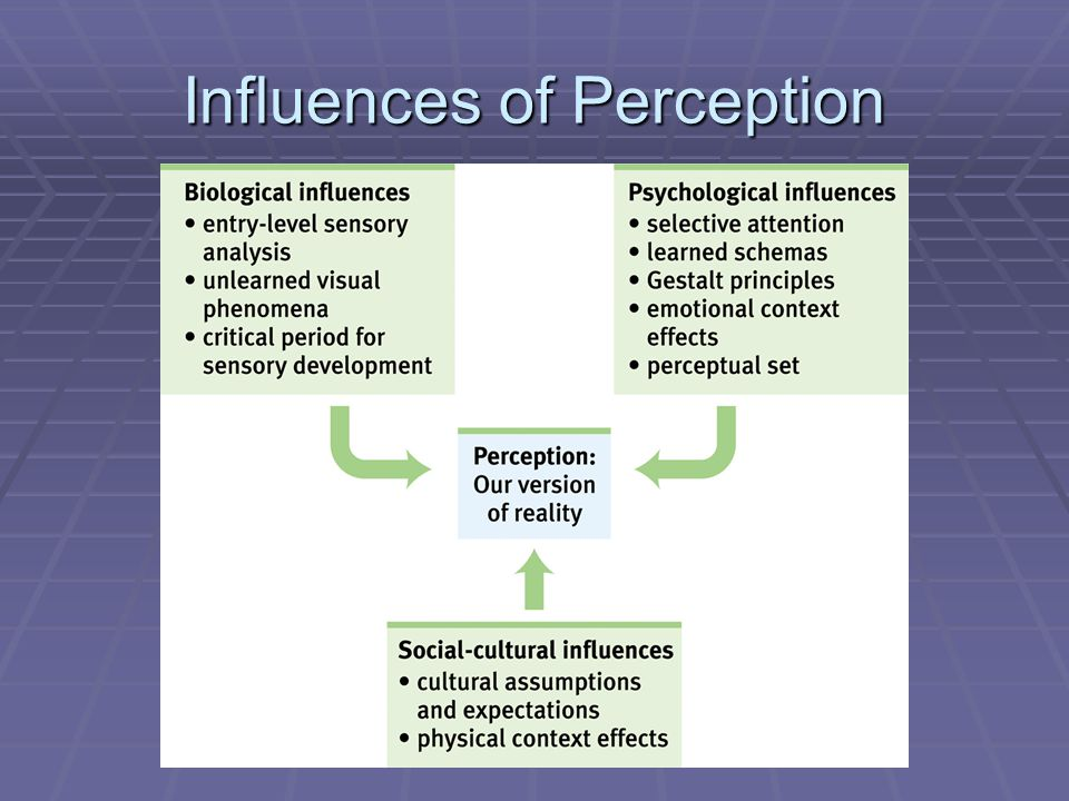 Unit 4 G Perceptual Organization And Interpretation