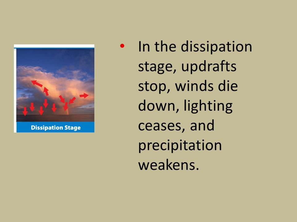 In the dissipation stage, updrafts stop, winds die down, lighting ceases, and precipitation weakens.