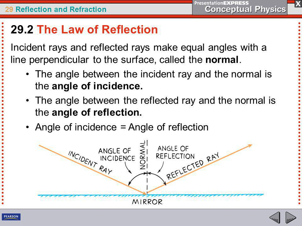 29.2 The Law of Reflection Incident rays and reflected rays make equal angles with a line perpendicular to the surface, called the normal.