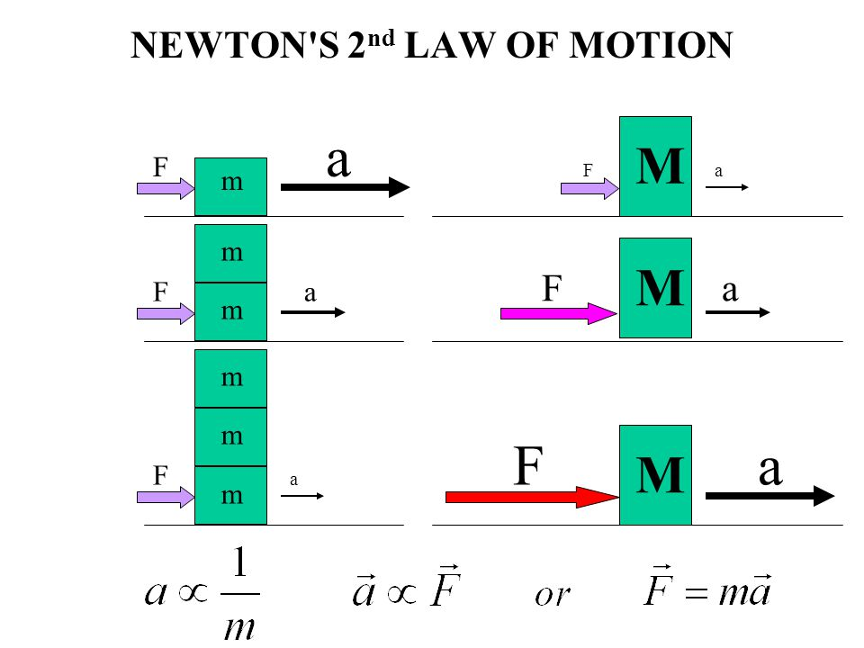 NEWTON S 2nd LAW OF MOTION